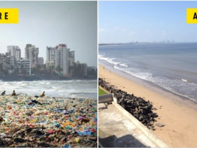 Clean-up Bombay
